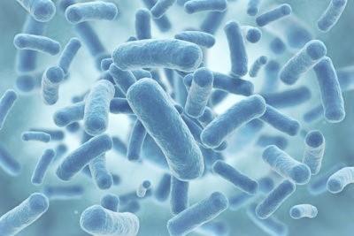 ¿Es bueno tomar probióticos?